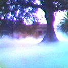 Fujiko Nakaya's Fog Sculpture in the Domain opposit AGNSW