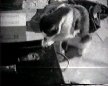 The Akai portapak video recorder comes under close examination. Frame from Akai Ghost Poems an edit of the Yellow TV tapes by Albie Thoms (1971).