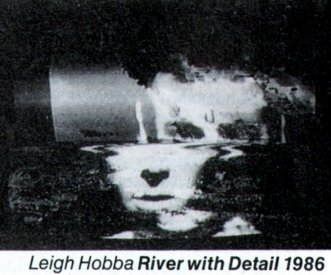 Catalogue image from Leigh Hobba's River with Detail (1986) installed at the Art Gallery of NSW.