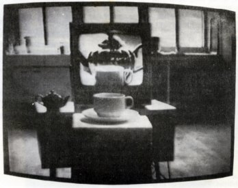 Still from catalogue for Project 30: Some Recent Australian Videotapes (AGNSW) - David Perry's Interior with Views, (1976).