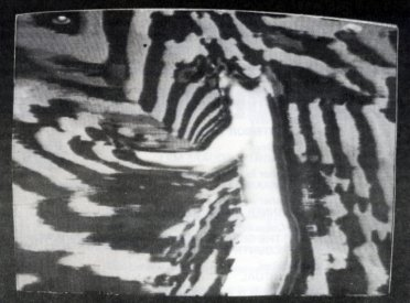 Still from Stephen Jones' Tai Chi Transforms (1975-6) from the catalogue for Project 30 (AGNSW) Some Recent Australian Videotapes.