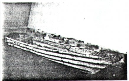 Image from catalogue entry for Allan Vizents' Asleep and Awake - the canoe (?)