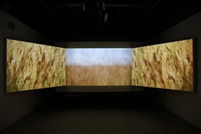 Scott Morrison, This is a Transmission, Screenspace, Installation View, 2011.jpg
